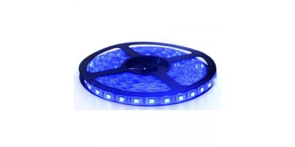Tira LED 14.4W/m Azul 12VDC Exterior 5m (60 LEDs x m) SMD5050