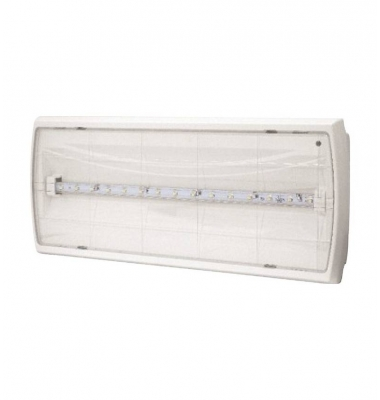 Emergencia LED 150 Lumen Tiger. Transparente.