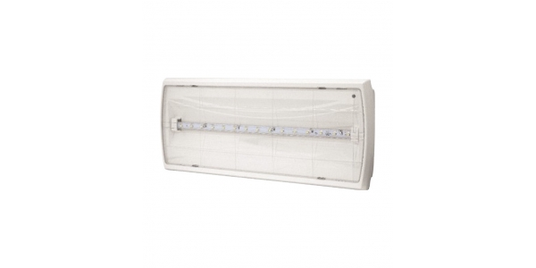 Emergencia LED 200 Lumen Tiger. Transparente.
