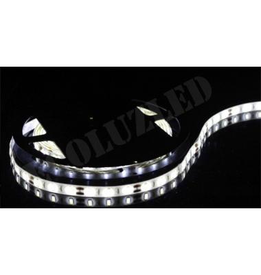 Tira LED 9.6W x m. 24VDC. IP20. 5 metros (120 LEDs x m) SMD3528