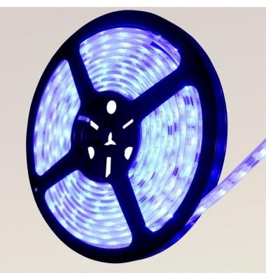 Tira LED Azul 14,4W x metro.12VDC, SMD5050. Rollo 5 metros. 60 LEDs/metro. Uso Interior y Espacios Húmedos - IP55