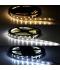 Tira LED 15W x metro.12VDC, SMD5630. Rollo 5 metros. 60 LEDs/metro. Uso Interior y Espacios Húmedos - IP55