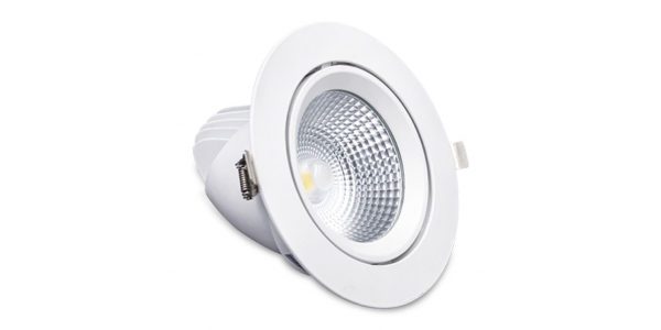 Proyector LED Orientable Model 40W. Blanco Natural. Ángulo 180º