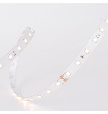 Tira LED Monocolor 4.3W/m, 24V-IP65. SMD2835. 157lm/w, 64 LEDs/m. Carrete 5 metros