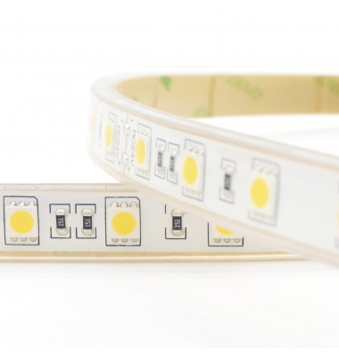 Tira LED 14,4W/m. 12VDC, SMD5050. 60 LEDs/m. Blanco Frío de 6000k, Exterior, IP68, 1 metro