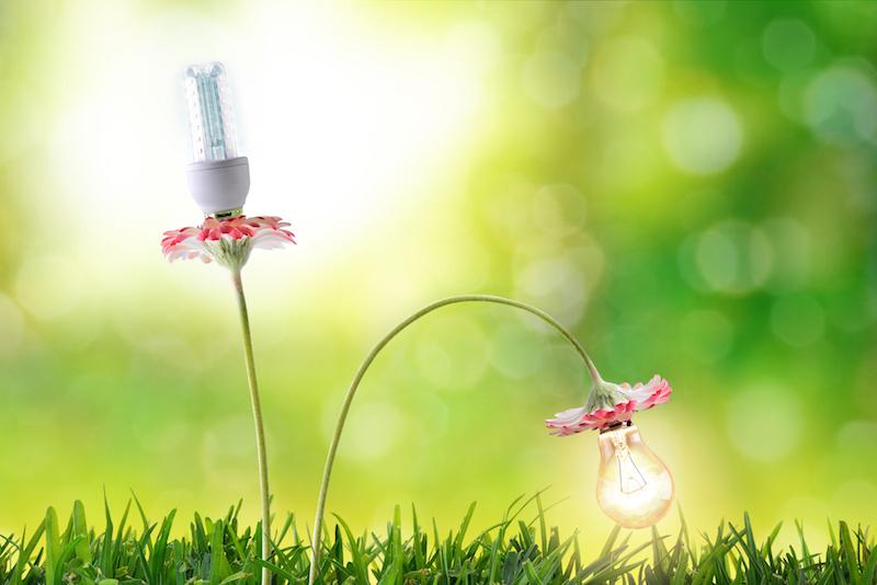 iluminación ecológica